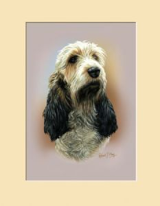 Original Basset Griffon Vendeen Head Study Painting